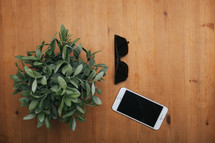 house plant, sunglasses, iPhone on a table top