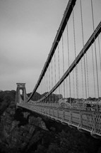 bridge with cables