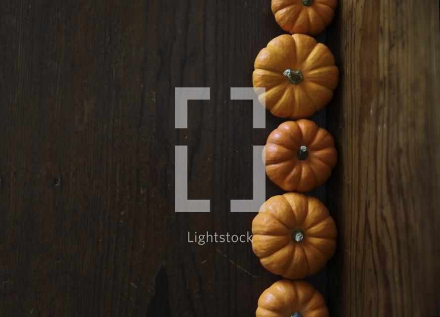 row of orange mini pumpkins on wood