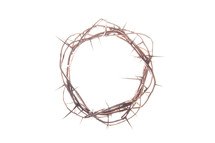 Crown of thorns on white.