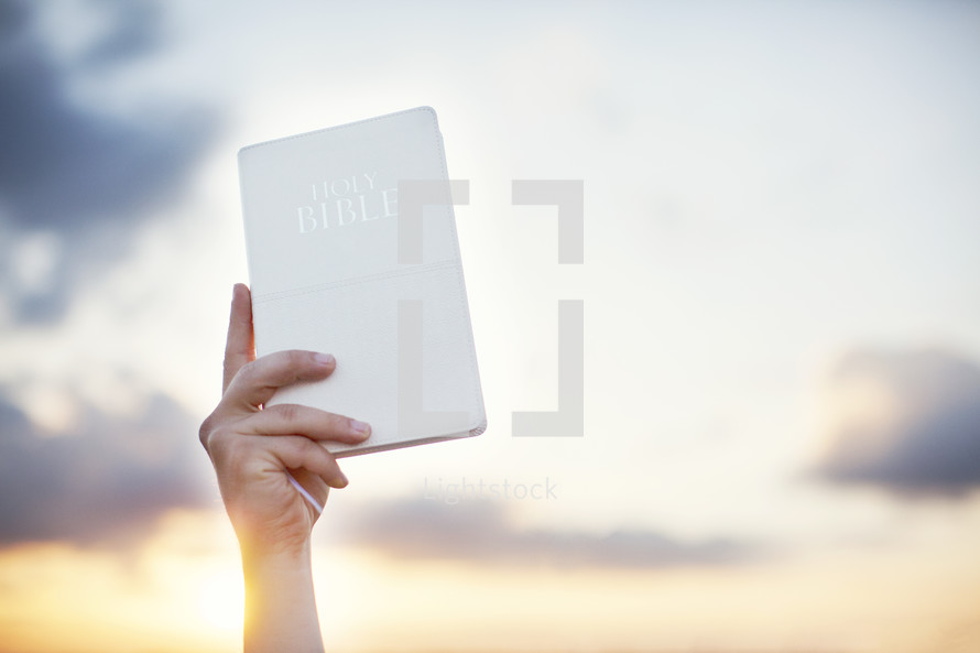 hand holding up a white Bible in the sky