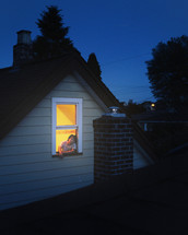 man with his head out a window at night
