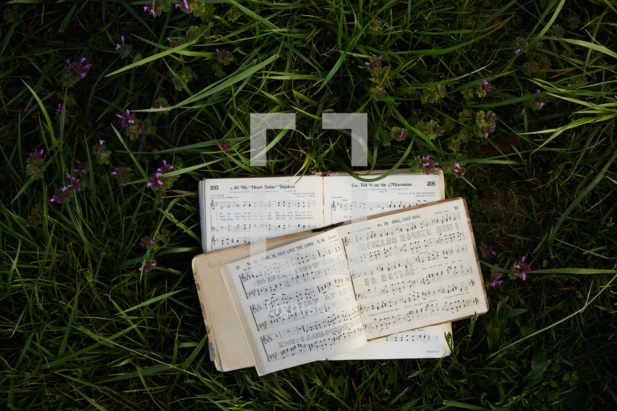 hymnal in grass