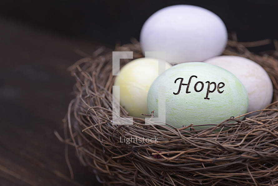 Easter eggs in bird nest with the word hope