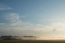 fog over a meadow