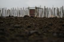 muddy ground on a farm