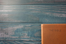 leather Bible and green wood background