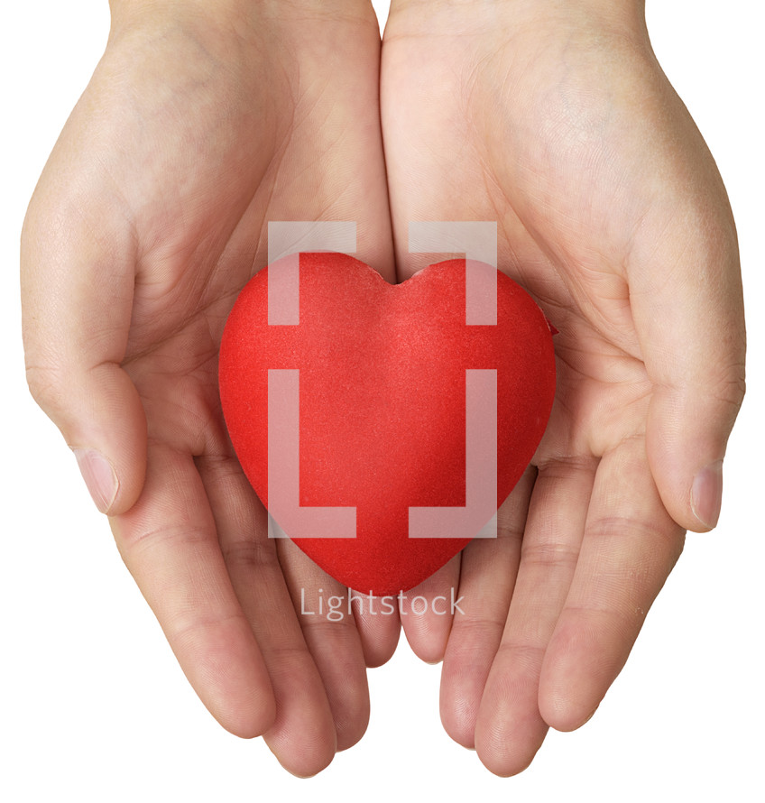 red heart in palms
