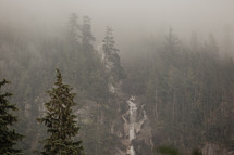 moody and misty waterfall and forest