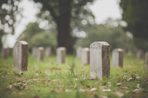 tombstones of soldiers in a cemetery