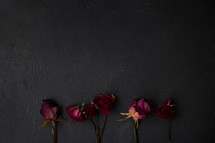 dried roses on slate