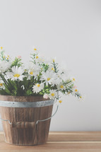 a wooden bucket full of spring daisies