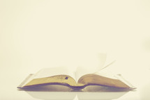 open Bible against a white background