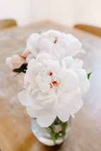 peonies on a table