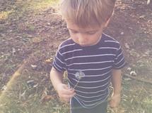 a boy with a dandelion