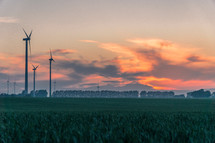 field of green wheat and wind turbines at sunset
