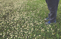 a child standing in a field of clover flowers