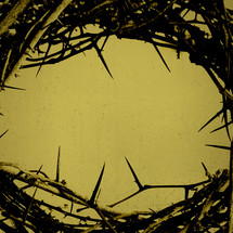 a crown of thorns on a grunge gold background.