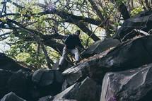 a man climbing down a rocky terrain