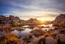 puddle in a desert landscape