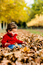 a toddler boy sitting in fall leaves
