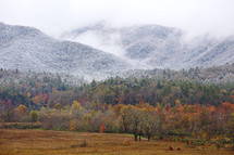 fog over a fall mountain forest