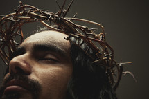 Jesus interceding  -  The crown of thorns on top of his head