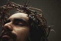 Jesus interceding  -  The crown of thorns on top of his head