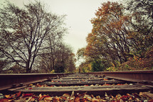 leaves on train tracks