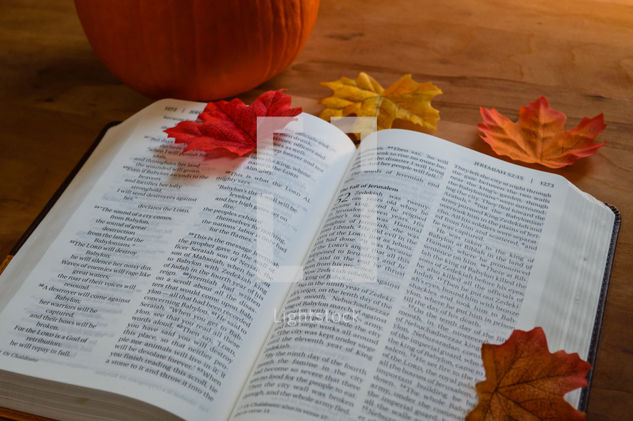 fall leaves on page of an open Bible