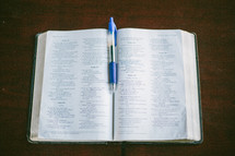 pen marking the pages of a Bible