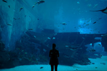 a woman standing in front of an aquarium