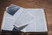 flipping pages of a Bible
