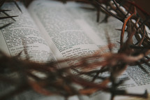crown of thorns on the pages of a Bible