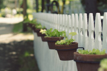 flower pots hanging on a white picket fence