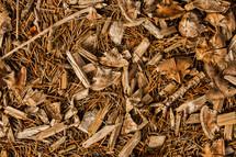 mulch texture fall wood sticks