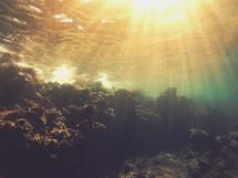 rays of sunlight shining under water