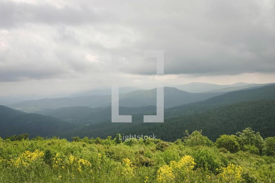 green mountain range