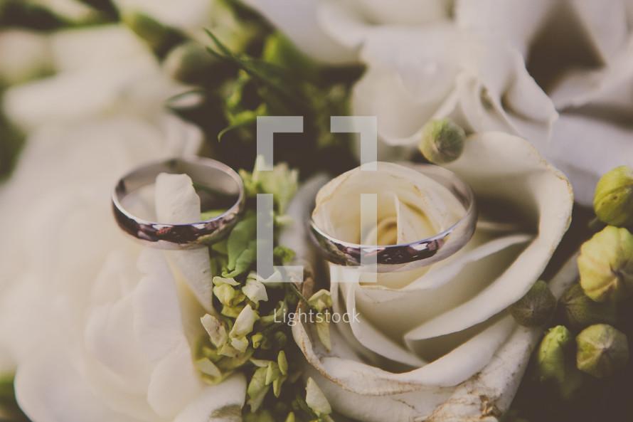 wedding bands on white roses