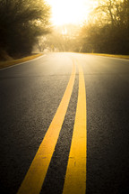 sunlight on a road