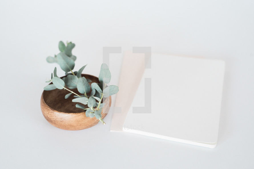 eucalyptus sprig in a wooden bowl and stationary