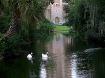 The reflecting pond - a pair of swan gracefully glide across a quiet and peaceful pond with the reflection of Bok Tower in the background.