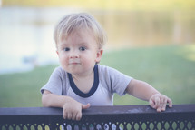 a toddler boy looking over the back of a park bench