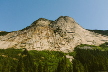 forest and mountain peak