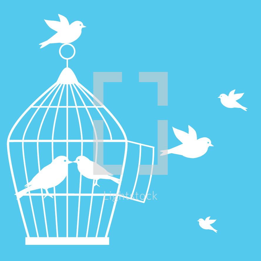 birds and a bird cage