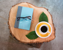 book, reading glasses, fern, twig, log, cut wood, tree rings, stump, reading, misc items