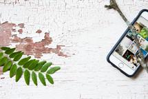 cellphone, sticks, sprig, white background