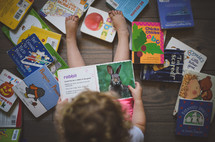 toddler reading children's books