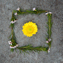 framed flower with leaves