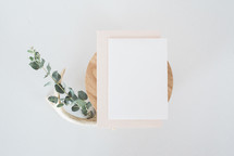 antlers, eucalyptus, and stationary on wood